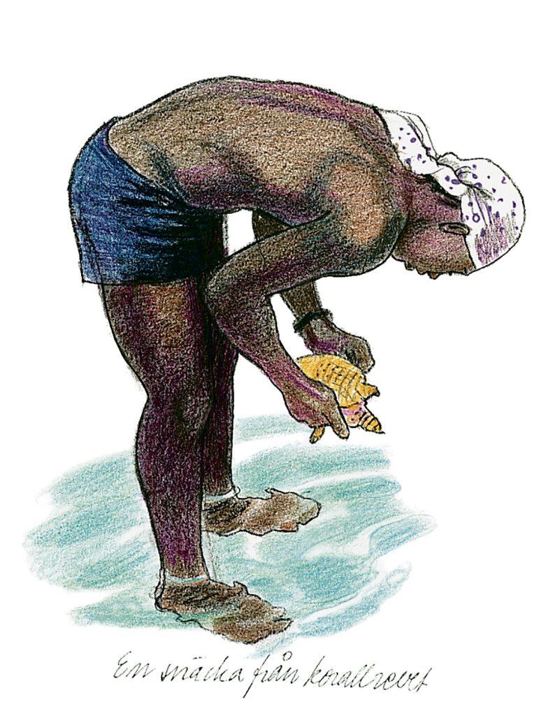 Conch fiskare