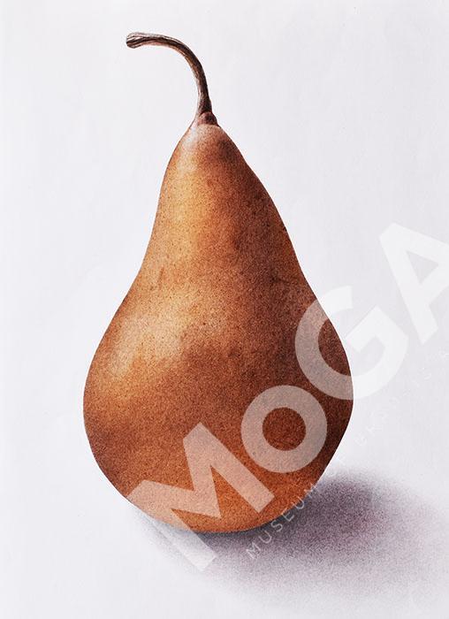 Kaiser Alexander, päron